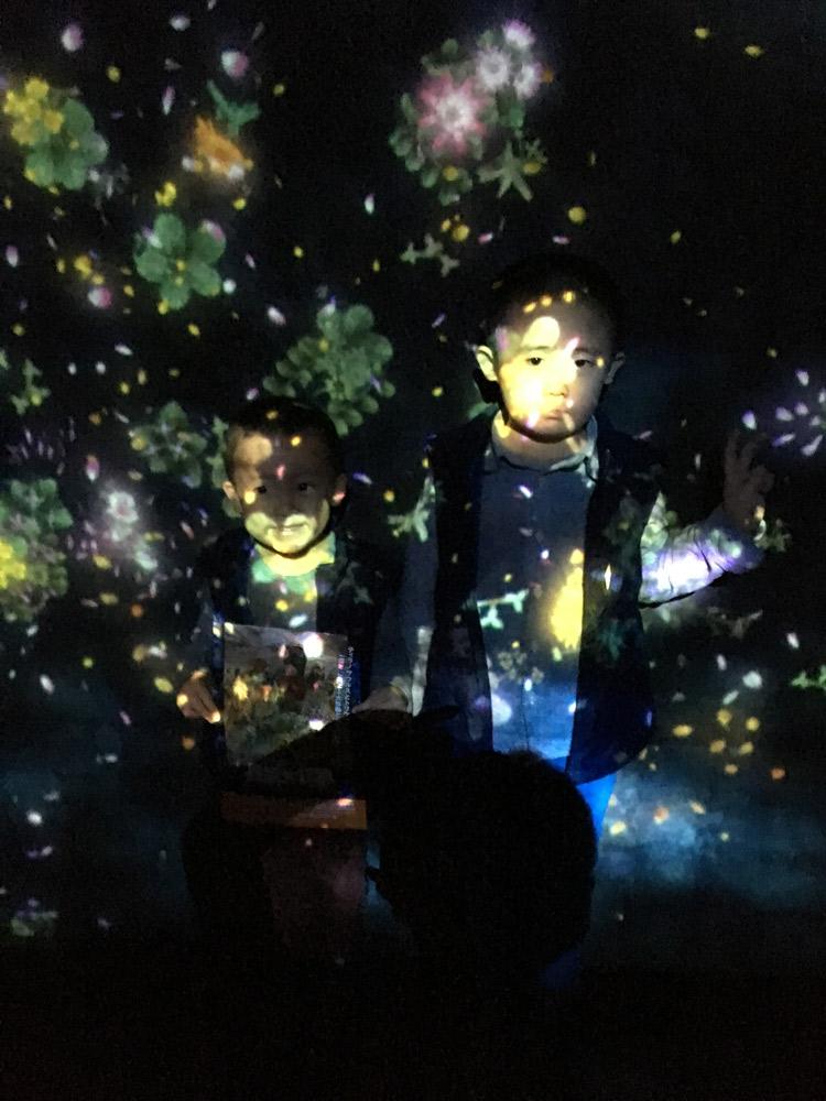 チームラボアイランド 踊る!アート展と、学ぶ!未来の遊園地